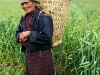 woman farmer, Bumthang
