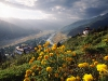 Farm lands, panoramic view of beautiful Paro Valley with flowers and Paro Dzong